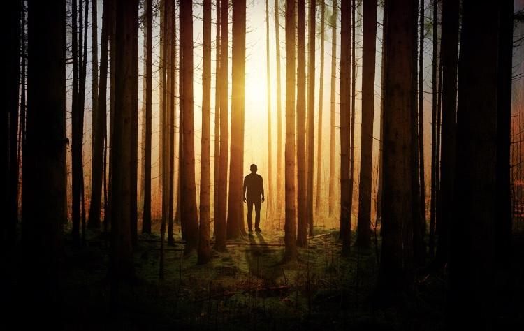 森の中の人
