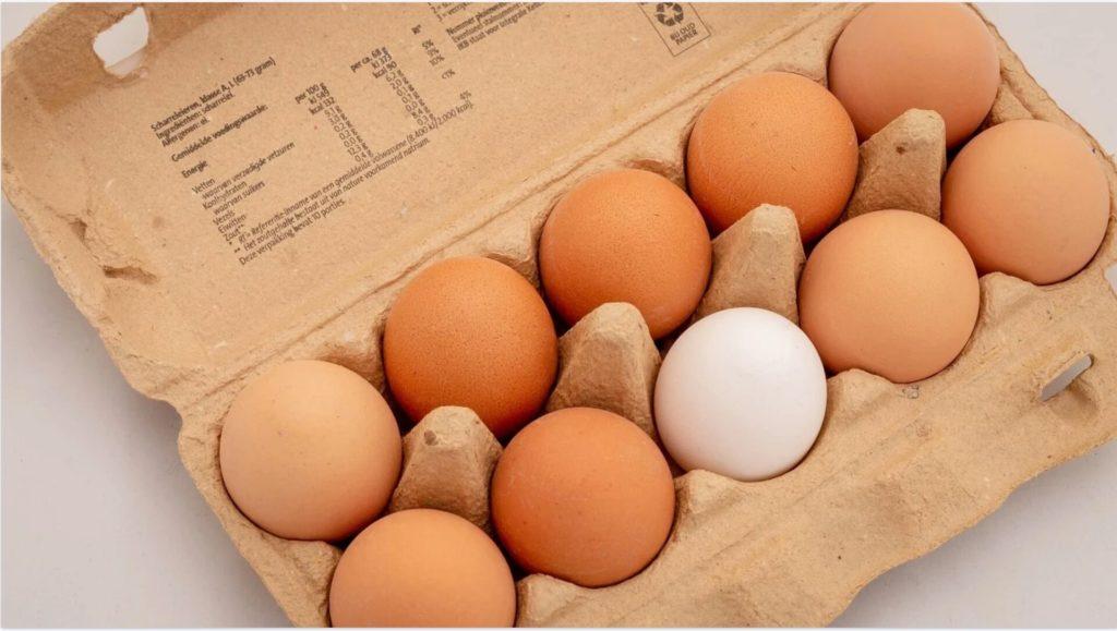 色が違う卵