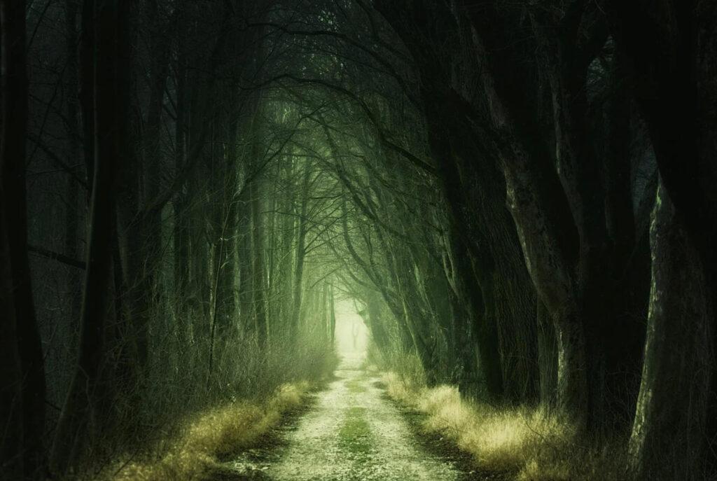 暗闇に続く道